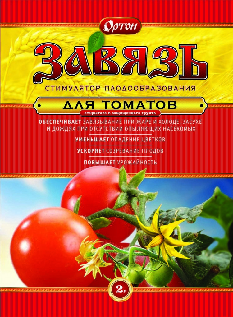 чем обработать помидоры для образования завязи средней заработной